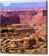 Grand Canyon Of Utah Acrylic Print by Adam Jewell