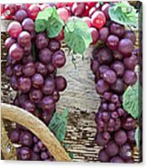 Grapes Acrylic Print by Tim Hightower