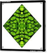 Green Banana Acrylic Print by Roberto Alamino