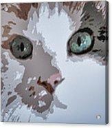 Green Eyes Acrylic Print by Patricia Januszkiewicz