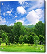 Green Forest Acrylic Print by Elena Elisseeva