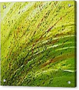 Green Landscape - Abstract Art  Acrylic Print by Ismeta Gruenwald