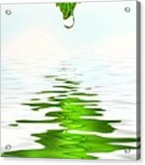 Green Leaf Over Water Reflection Acrylic Print by Sandra Cunningham