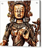 Green Tara Acrylic Print by Tim Gainey