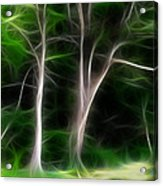 Greenbelt Acrylic Print by Wendy J St Christopher