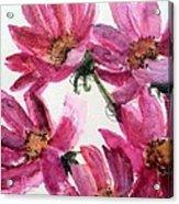 Gull Lake's Flowers Acrylic Print by Sherry Harradence