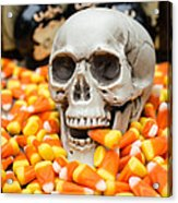 Halloween Candy Corn Acrylic Print by Edward Fielding