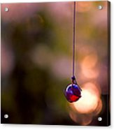 Hanging By A Thread Acrylic Print by Bonnie Bruno