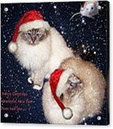 Happy Holidays Acrylic Print by Gun Legler