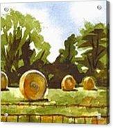 Hay Bales At Noontime  Acrylic Print by Kip DeVore