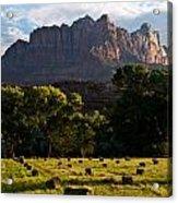 Hay Bales Rockville Utah Acrylic Print by Robert Ford