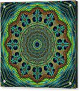 Healing Mandala 19 Acrylic Print by Bell And Todd