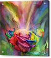 Healing Rose Acrylic Print by Carol Cavalaris