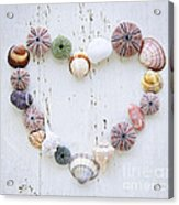 Heart Of Seashells And Rocks Acrylic Print by Elena Elisseeva