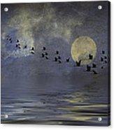 Heavens Gate Acrylic Print by Diane Schuster