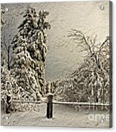 Heavy Laden Blizzard Acrylic Print by Lois Bryan