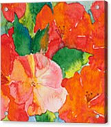 Hibiscus Flowers Acrylic Print by Michelle Wiarda