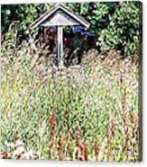 Hidden Wishing Well Acrylic Print by Christy Patino