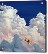 High In The Halls Of Freedom Acrylic Print by Michael Swanson