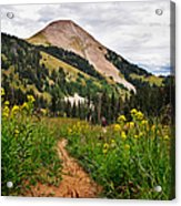 Hiking In La Sal Acrylic Print by Adam Romanowicz