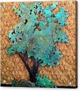 Hokkidachi Copper Bonsai Acrylic Print by Vanessa Williams