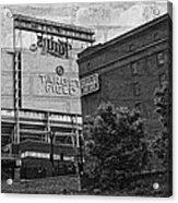 Home Of The Minnesota Twins Acrylic Print by Susan Stone