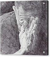Homo Sapiens II Acrylic Print by Mike Walrath