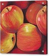 Honeycrisp Apples Acrylic Print by Anastasiya Malakhova