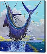 Hooked Up Off004 Acrylic Print by Carey Chen