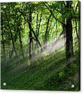 Hope Lights Eternal - Blue Ridge Parkway I Acrylic Print by Dan Carmichael