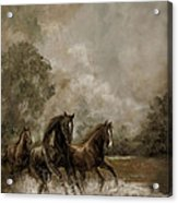 Horse Painting Escaping The Storm Acrylic Print by Regina Femrite