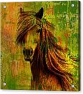 Horse Paintings 001 Acrylic Print by Catf