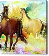 Horse Paintings 009 Acrylic Print by Catf