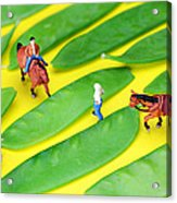 Horse Riding On Snow Peas Little People On Food Acrylic Print by Paul Ge