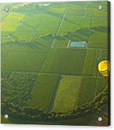 Hot Air Balloon Over Napa Valley California Acrylic Print by Diane Diederich