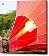 Hot Air Balloon Acrylic Print by Tom Gowanlock