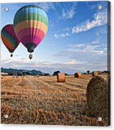 Hot Air Balloons Over Hay Bales Sunset Landscape Acrylic Print by Matthew Gibson