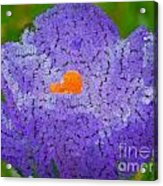 How Things Were Acrylic Print by Holley Jacobs