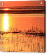 Hunting Island Tidal Marsh Acrylic Print by Michael Weeks