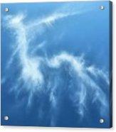 I See A Dragon Acrylic Print by JC Findley