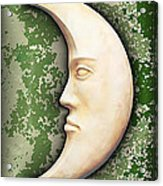 I See The Moon 3 Acrylic Print by Wendy J St Christopher