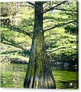 In The Lake Acrylic Print by Roberto Alamino