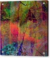 Inside Autumn Acrylic Print by Shirley Sirois