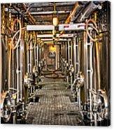 Inside Winery Acrylic Print by Elena Elisseeva