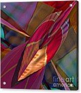 Into The Soul Acrylic Print by Deborah Benoit