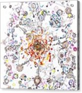 Intracellular Diversion Acrylic Print by Regina Valluzzi