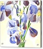 Irises Aglow Acrylic Print by Kip DeVore