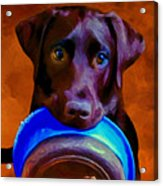 Is It Time Yet? Acrylic Print by Michael Pickett