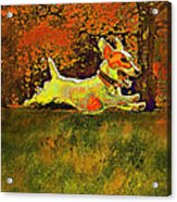 Jack Russell In Autumn Acrylic Print by Jane Schnetlage