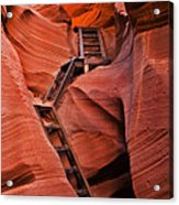 Jacob's Ladder Acrylic Print by Mike  Dawson